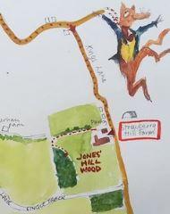Jones Hill Wood